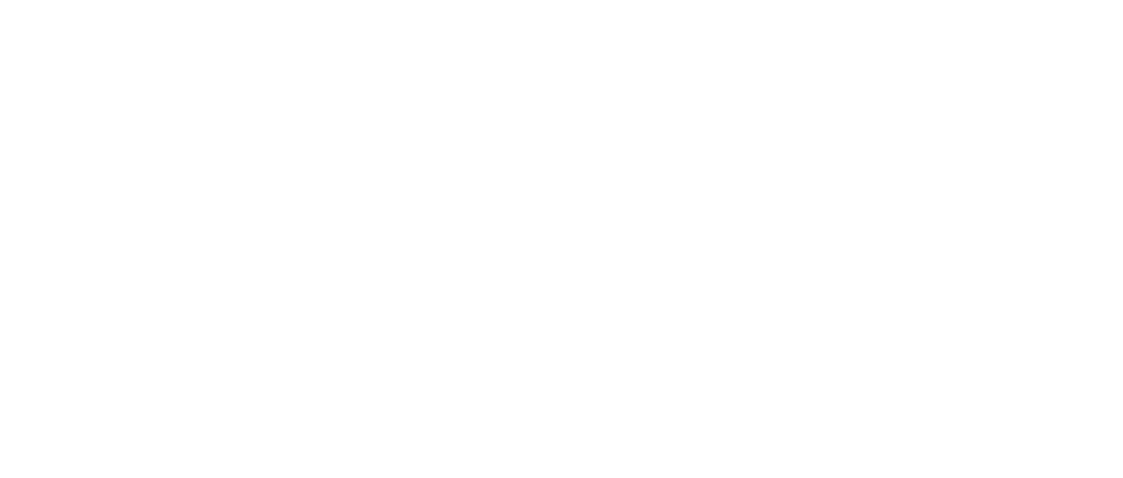 The Brick Battle